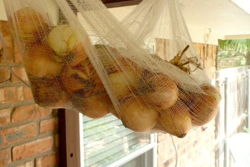Onions in a bassinet :)