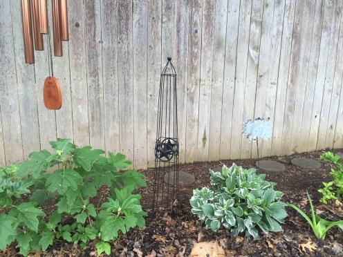 Oak Leaf Hydrangea & Silver Leaf Hydrangea!